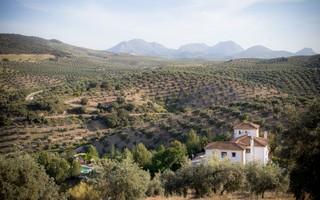 Hacienda El Tarajal