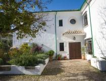 Maison de campagne «Casa Olea». Catégorie Supérieure
